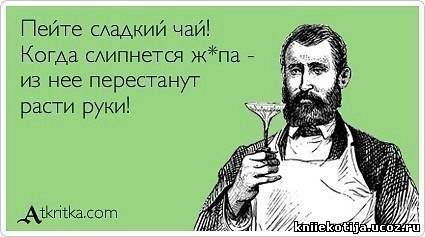 http://kniiekotija.ucoz.ru/_fr/0/7573308.jpg