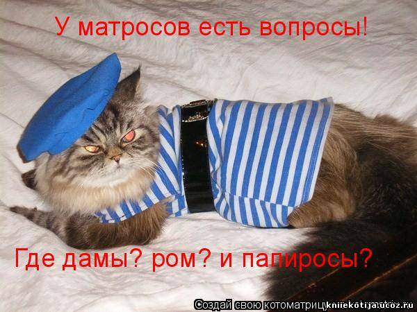 http://kniiekotija.ucoz.ru/_fr/2/2820671.jpg