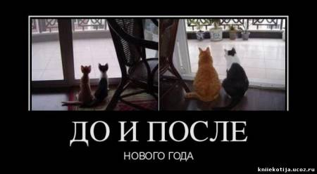 http://kniiekotija.ucoz.ru/_fr/2/s2884936.jpg